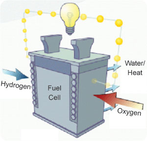 Fuel Cell Process